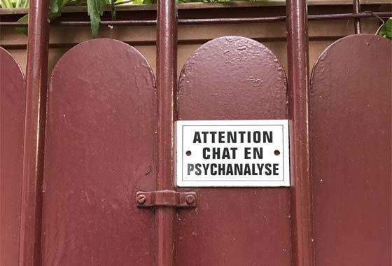 Chat en Psychanalyse villa olivier metra
